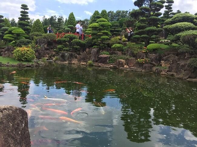 lado de carpas no jardim japonês do parque maeda