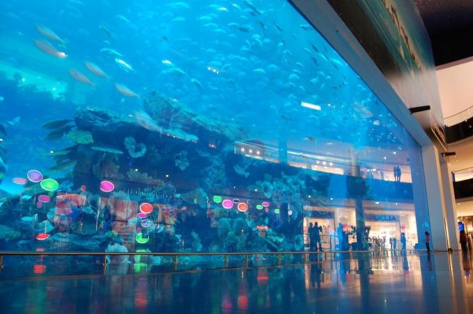o-que-fazer-em-dubai-aquario