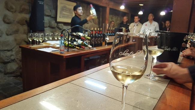 Vinícola Santa Rita, no Chile, é mergulho no mundo dos vinhos