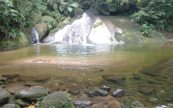Passeio ecológico área continental de Santos
