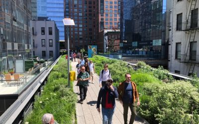 High Line: guia completo do parque suspenso de Nova York