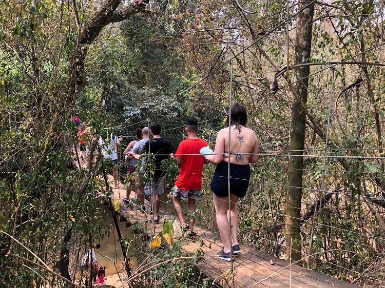 rio-tamandua-trilha