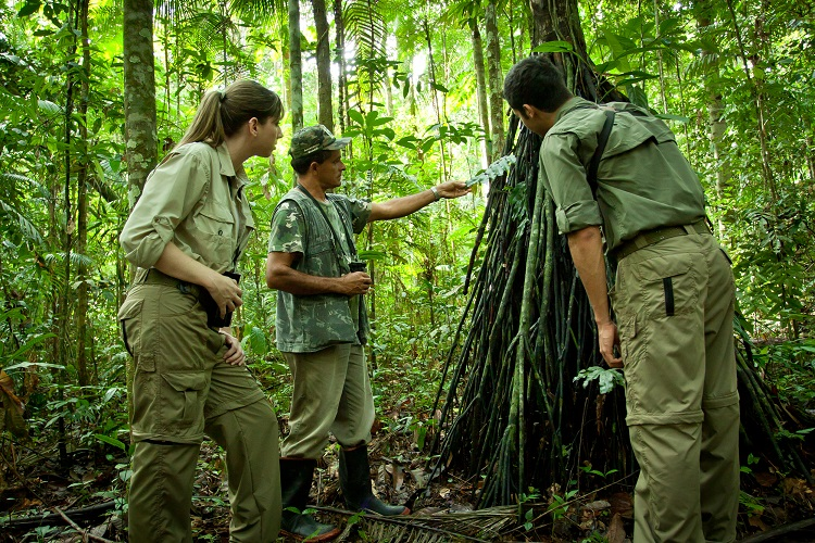 amazonia-floresta