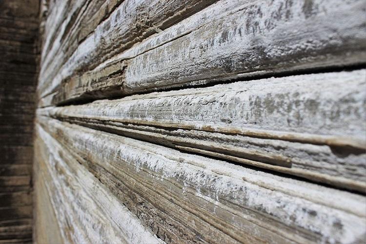 Rochas sedimentares formadas há 280 milhões de anos (Foto: Divulgação)
