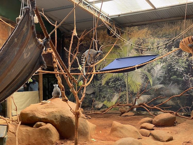 aquário-de-sao-paulo