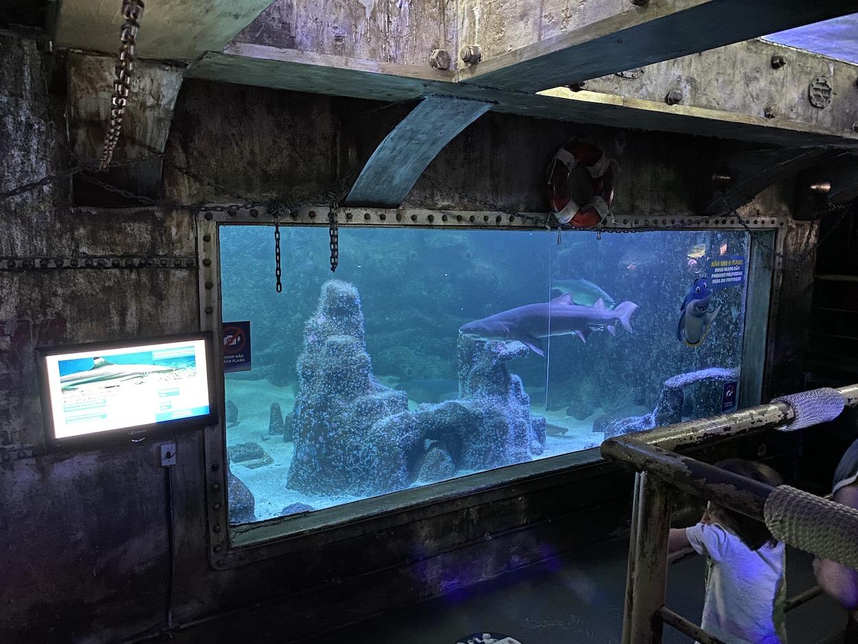 aquario-de-sao-paulo