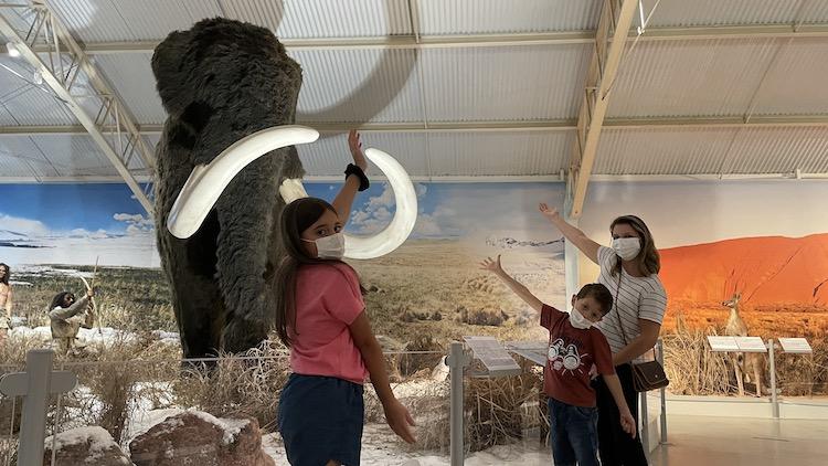 museu-historia-natural